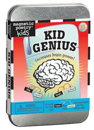 Magnetic Poetry Review & Giveaway