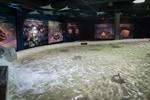 Vancouver Aquarium's Discover Rays