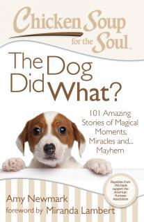 Chicken Soup for the Soul – The Dog Did What?