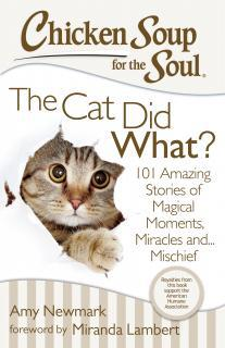 Chicken Soup for the Soul – The Cat Did What?