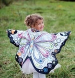 Colour A Costume-Butterfly Wings