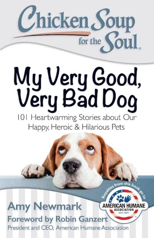 CSS My Very Good Very Bad Dog