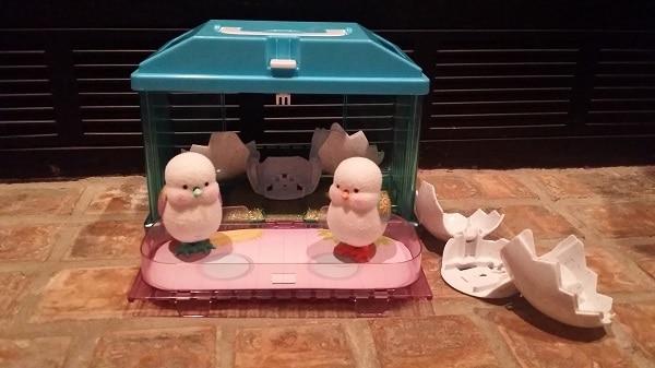 Live pets chick house